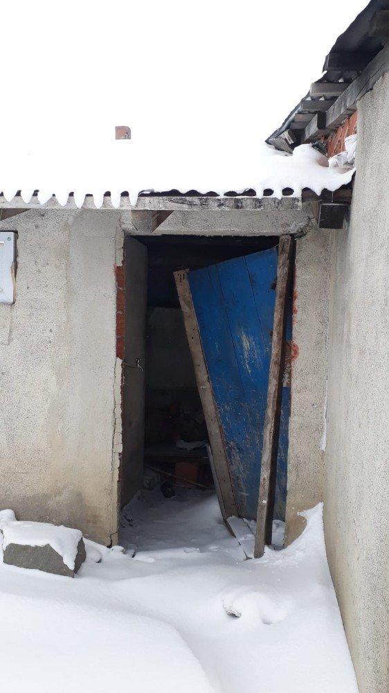 Ayılar Kış Uykusundan Uyandı, Yayla Evlerini Mesken Tuttu