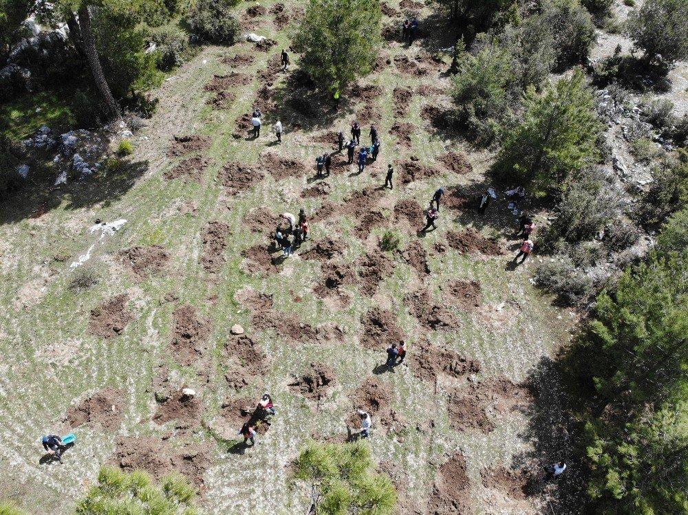 Şehit Er Hüseyin Özçelik Adına Hatıra Ormanı Oluşturuldu