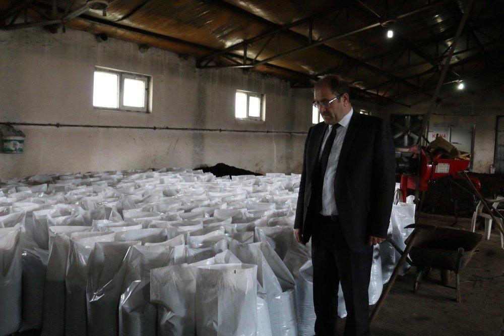 Solucan Gübresi Üretim İşletmesi İncelendi