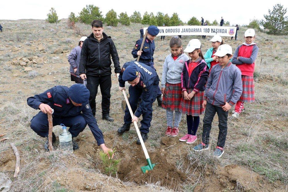 Yozgat'ta Jandarma Ve Öğrenciler Fidan Dikti