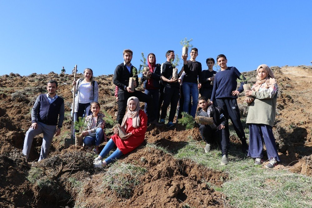 Sivas'ta 1919 Fidan Toprakla Buluştu