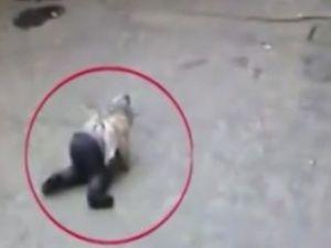 Çinli çocuk arabanın altında kalmaktan etkilenmedi